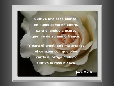 Cultivo una Rosa - Jose Marti